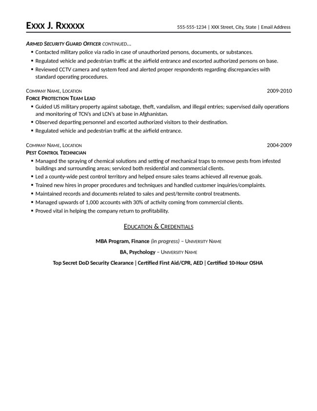security professional resume team leader